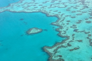 Photo by Anne Steinbach - Heart Reef
